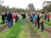 7-national-herbalist-workshop-oct-2012